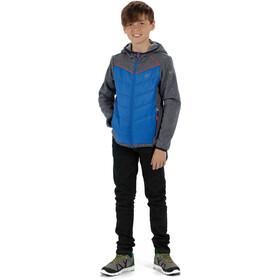 Regatta Kielder Hybrd III - Chaqueta Niños - gris/azul